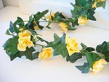 Amazon De Rosengirlande Rose Efeu 23 Gelbe Bluten