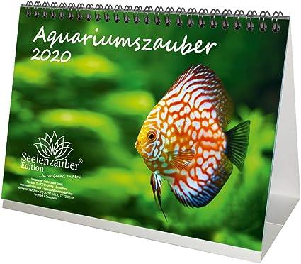 Calendario de mesa para acuario DIN A5, 2020, diseño de animales ...