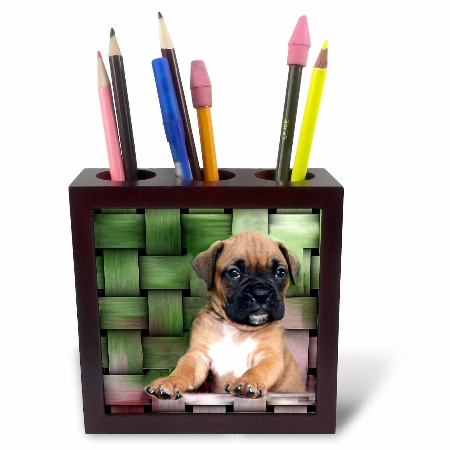 5-Inch 3dRose ph/_4142/_1 Brindle Boxer Puppy Tile Pen Holder