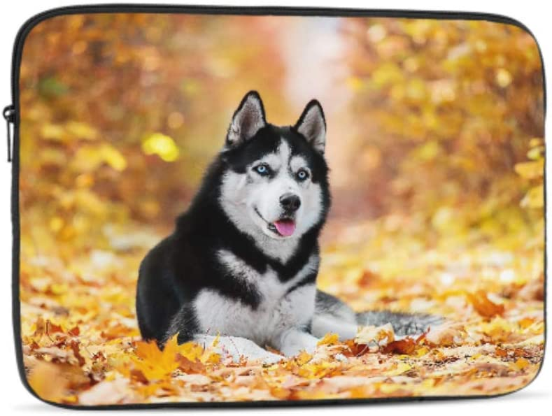 Designed to Fit Any Laptop//Notebook//ultrabook//MacBook with Display Size 11.6 Inches Blueeyed Husky Pattern Neoprene Sleeve Pouch Case Bag for 11.6 Inch Laptop Computer