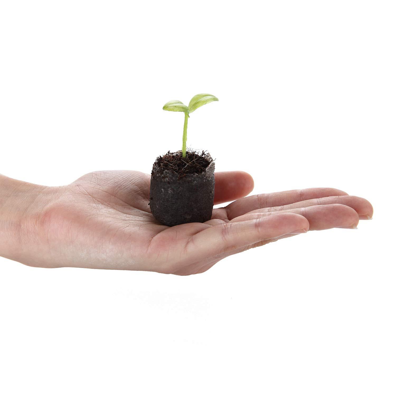 T4U 3CM Super Peat Soil Pellets Soil Pellets for Seeds Seedling Soil Block Easy to Operate Soil of Rapid Expansion Pack of 100