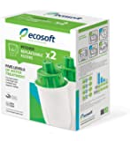 Ecosoft Water Pitcher Filter Replacement Cartridges (2)