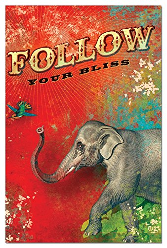 Follow Your Bliss Elephant Blank Boxed Note Cards With Envelopes, All Occasion (12 Count) - Cute Inspirational Notecards, FS66485 Tree-Free Greetings 12 Boxed Notes