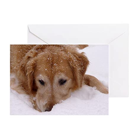 Amazon cafepress winter golden retriever greeting card 20 cafepress winter golden retriever greeting card 20 pack note card m4hsunfo