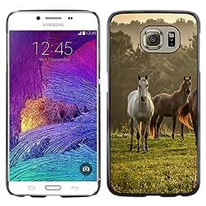 Stuss Case / Funda Carcasa protectora - Horses Nature Meadow Fog Mist Field Mustang - Samsung Galaxy S6 SM-G920