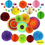 Fiesta Party Decorations, Paper Fans, Pom Poms and Rainbow Party Supplies for Birthdays, Cinco De Mayo, Festivals, Carnivals, Graduation (20 Pieces)
