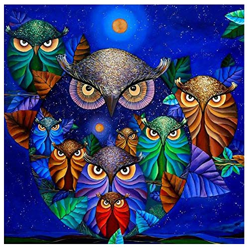 amond Painting by Number Kits, Asylove Round Crystal Rhinestone Embroidery Cross Stitch - How Many Owls, Home Wall Decor Living Room 12X12 inches ()