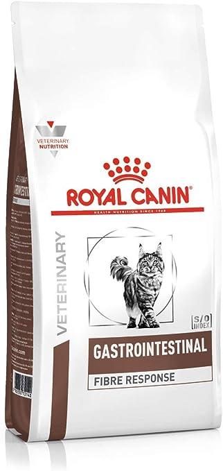 ROYAL CANIN Alimento para Gatos Fibre Response FR31-2 kg: Amazon ...