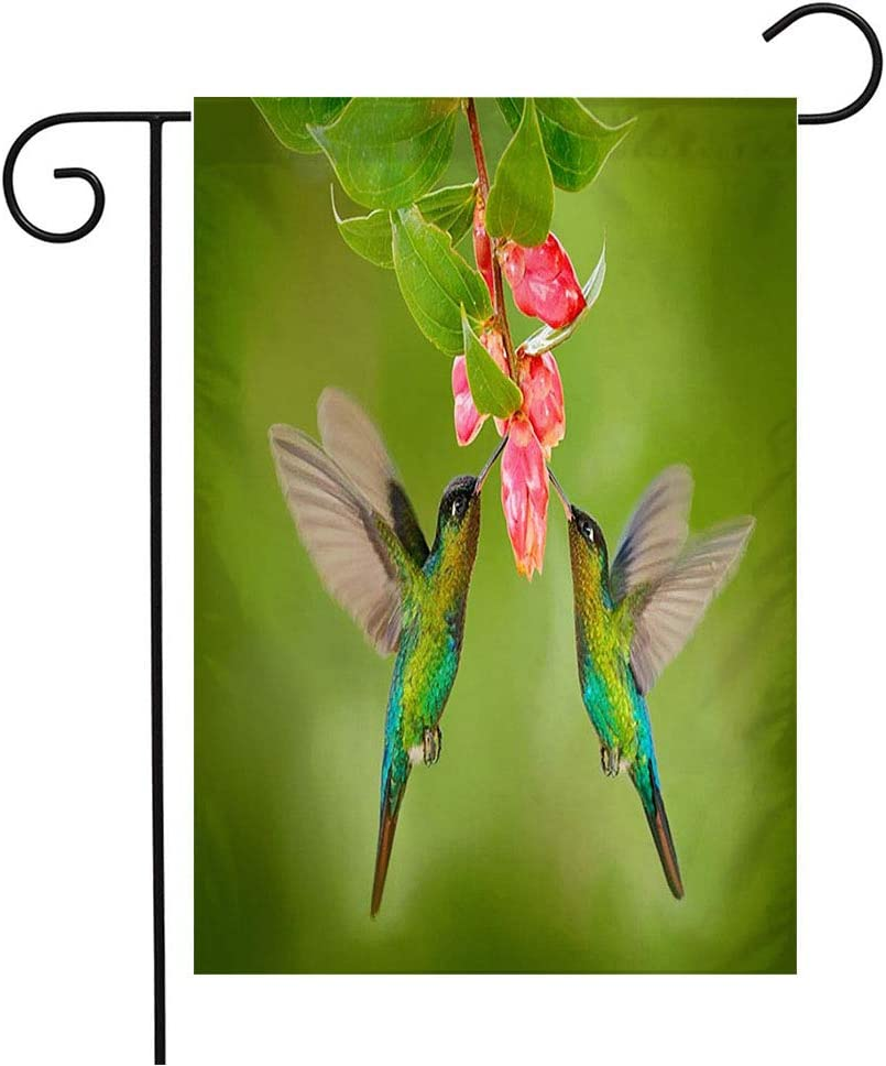 "Garden Flag Yard Decorations Bill Two Wing Hummingbirds Pink Place Flower to Bird Fierythroated Animals Flutter Wildlife Nature Outdoor Small Polyester Flag Double Sided 12"" x 18"""