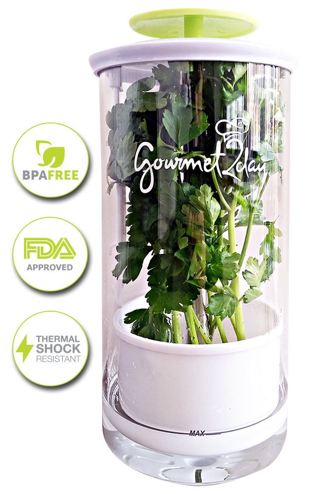 Glass Herb Keeper - Anti-leakage fresh herb container - Free paleo recipe eBook - Herb storage holder keeps herbs fresh and green for up to 2 Weeks Gourmet2day COMIN16JU020525