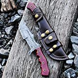 Cheap Buck n Bear Custom Handmade Damascus Tanto Tracker Fixed Blade Knife (Red G10)
