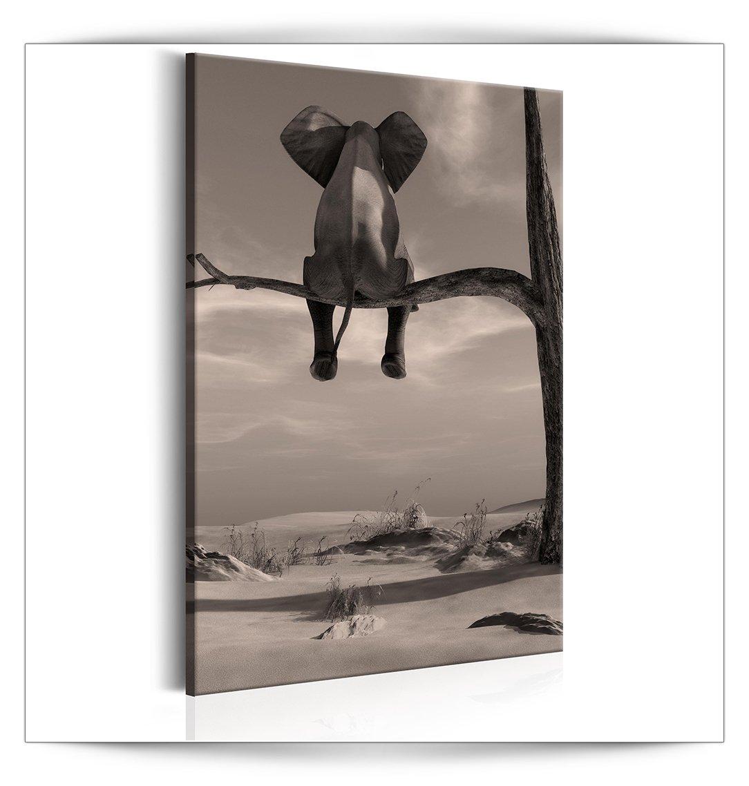 Decomonkey Akustikbild Elefant 60x90 cm 1 Teilig Bilder Leinwandbilder Wandbilder XXL Schallschlucker Schallschutz Akustikdämmung Wandbild Deko leise Landschaft Natur Tiere