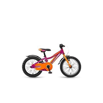 Pour enfants/JUGEN Roue Winora Rage 16'en 2couleurs RH 21cm
