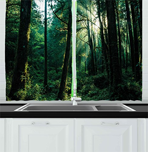 Ambesonne Nature Kitchen Curtains, Sunset in Woods Sun Beami