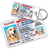 Illinois Driver License Custom Dog Tags for Pets (2) and Wallet Card - Personalized Pet ID Tags - Dog Tags For Dogs - Dog ID Tag - Personalized Dog ID Tags - Cat ID Tags - Pet ID Tags For Cats