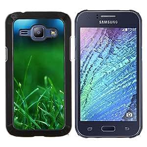 "For Samsung Galaxy J1 J100 , S-type Planta Naturaleza Forrest Flor 37"" - Arte & diseño plástico duro Fundas Cover Cubre Hard Case Cover"