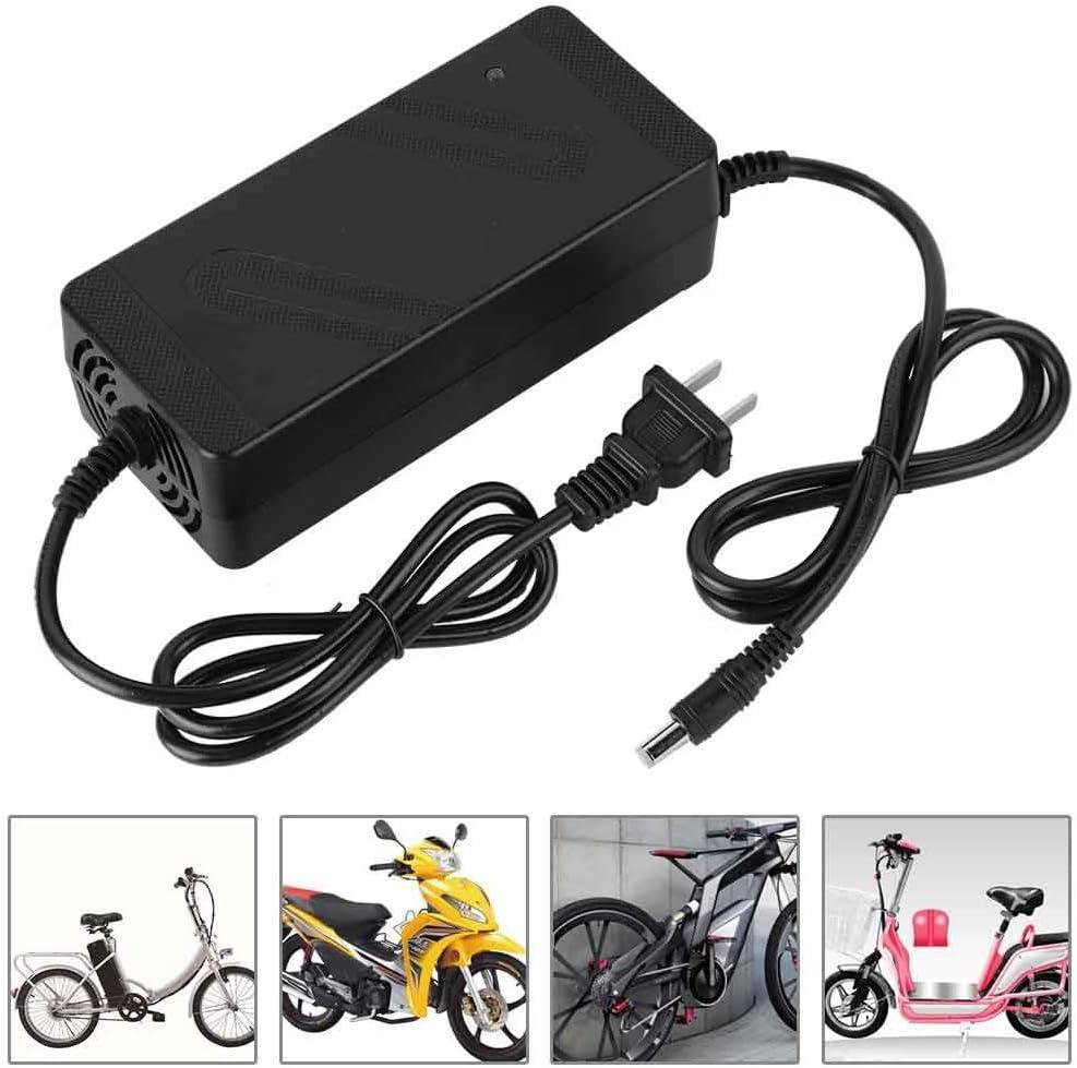 Keenso Cargador de Bicicleta eléctrica, DC HeadCN Plug 180V-220V ...