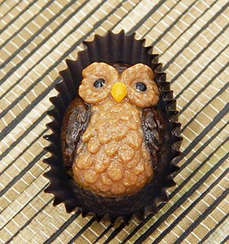 Owl Art Glass Chocolate Handmade Gift Table Top Décor pate de verre - Oval Pate