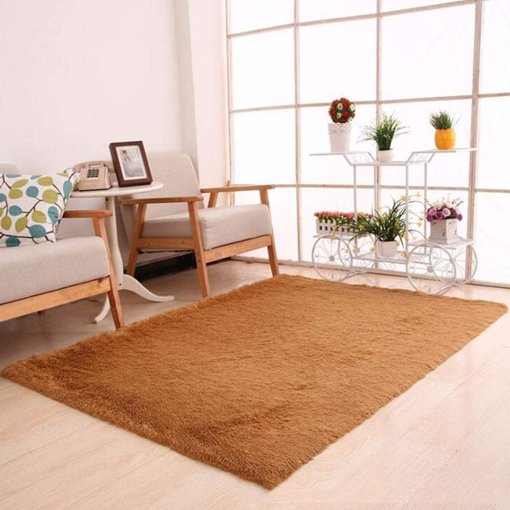 CarPet Household Foyer Bedroom Living Room Bedside Silk Door Mat Mat Color : Pink, Size : 100160cm