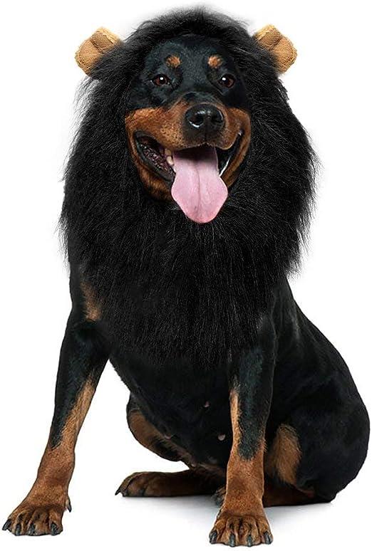 Rhww Peluca De LeóN para Perro con Orejas, Negro Mascota Disfraz ...