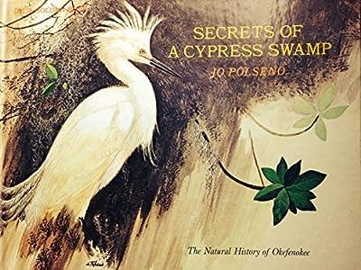 Secrets of a Cypress Swamp