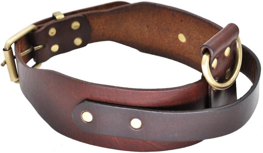 SLZZ Collar de perro de piel con asa - Buen control para perros medianos y grandes caminatas - Heavy Duty Cómodo Suave Latigo Cuero auténtico - Cincha ajustable del cuello 45 cm - 22 cm