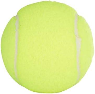 PennChampionship Tennis BallsPinkChoose Quantity100/% Authentic