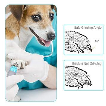 Amazon.com: Cortador de uñas para perros, mascotas ...