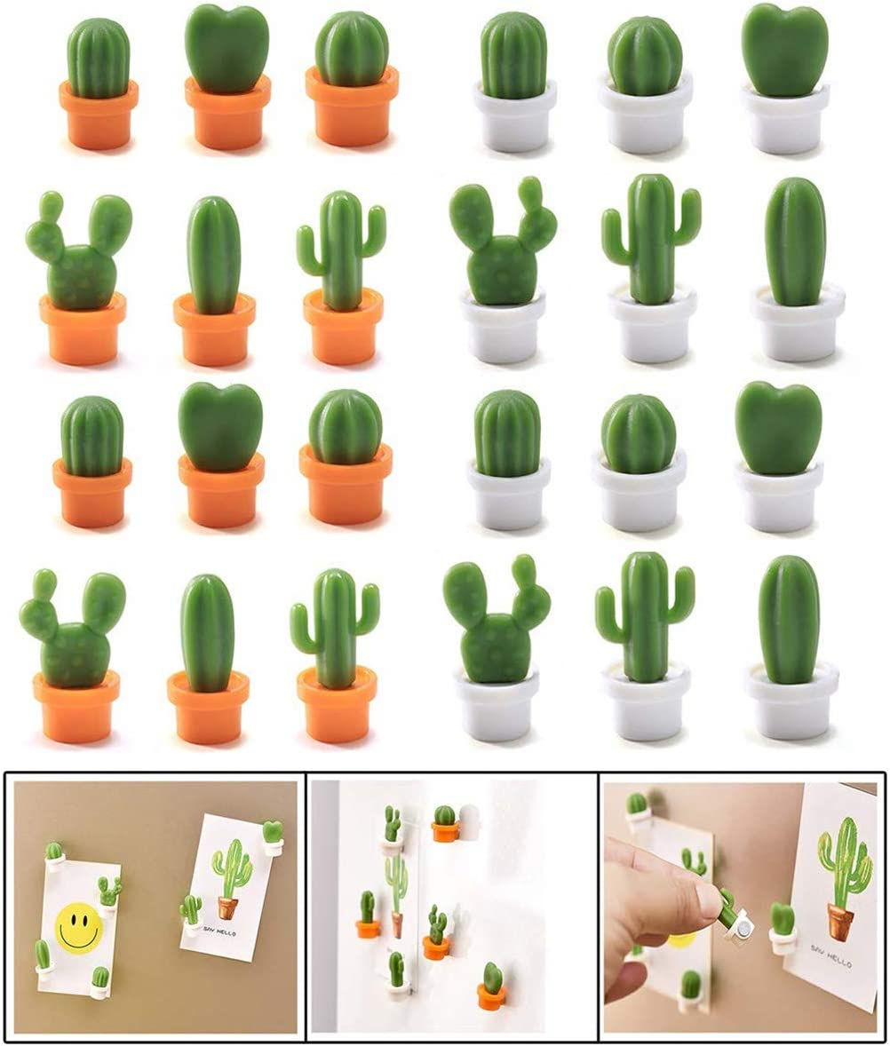 24-Pcs Cactus Decorative Refrigerator Magnets, Perfect Fridge Magnets for House Office Personal Use