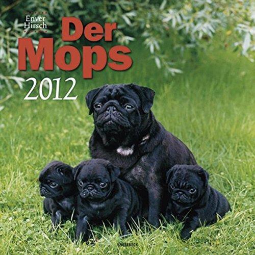 Der Mops 2012
