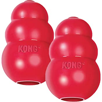 Pet Supplies : Pet Chew Toys : KONG Classic Dog Toy, Large