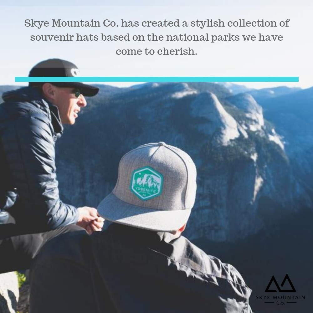 112f51f6 Amazon.com: Skye Mountain Co.. - Yellowstone Logo Hat | Trucker Hat -  Snapback (One Size): Clothing