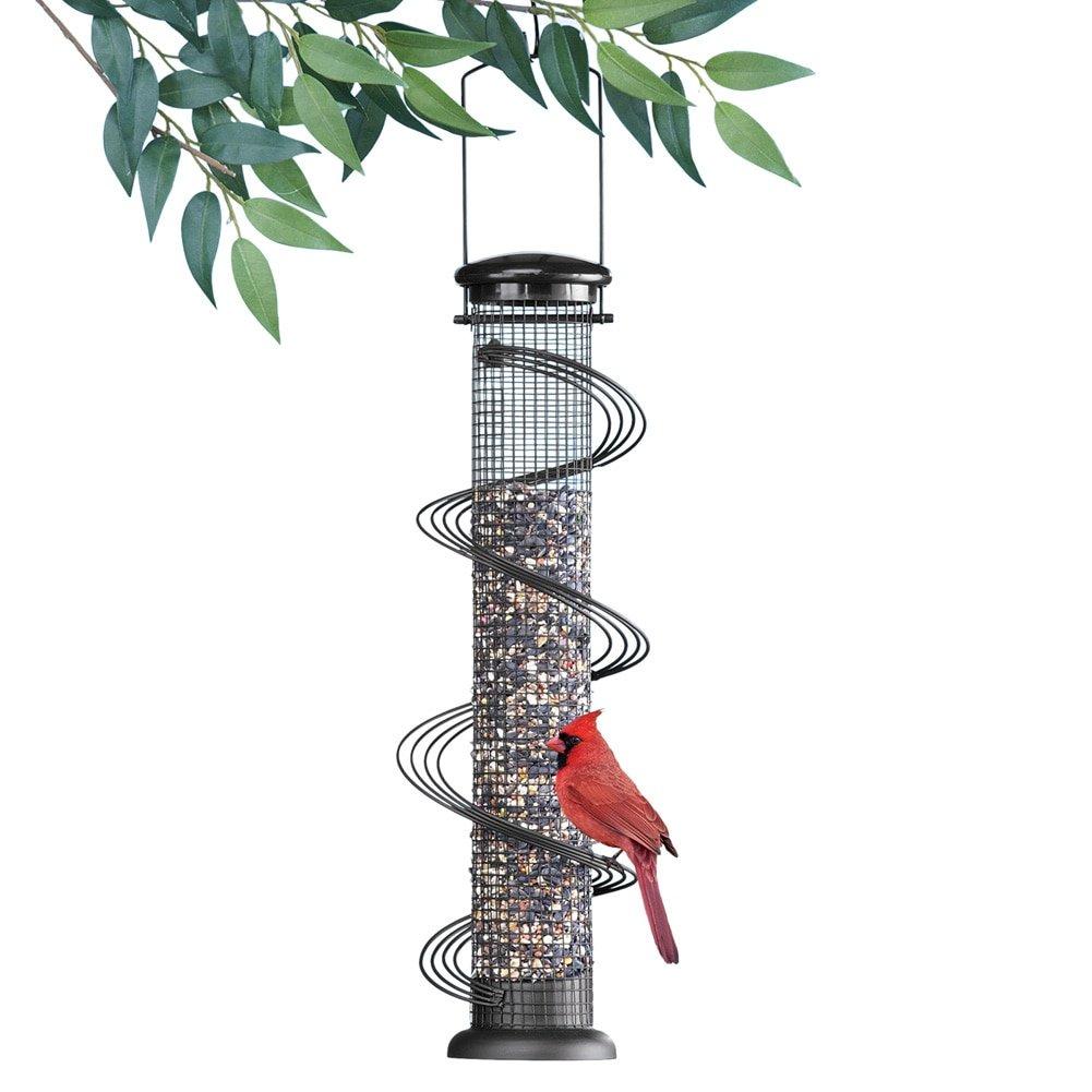 Hanging Spiral Perch Birdfeeder