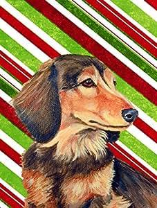 Caroline's Treasures LH9256GF Dachshund Candy Cane Holiday Christmas Flag, Small, Multicolor