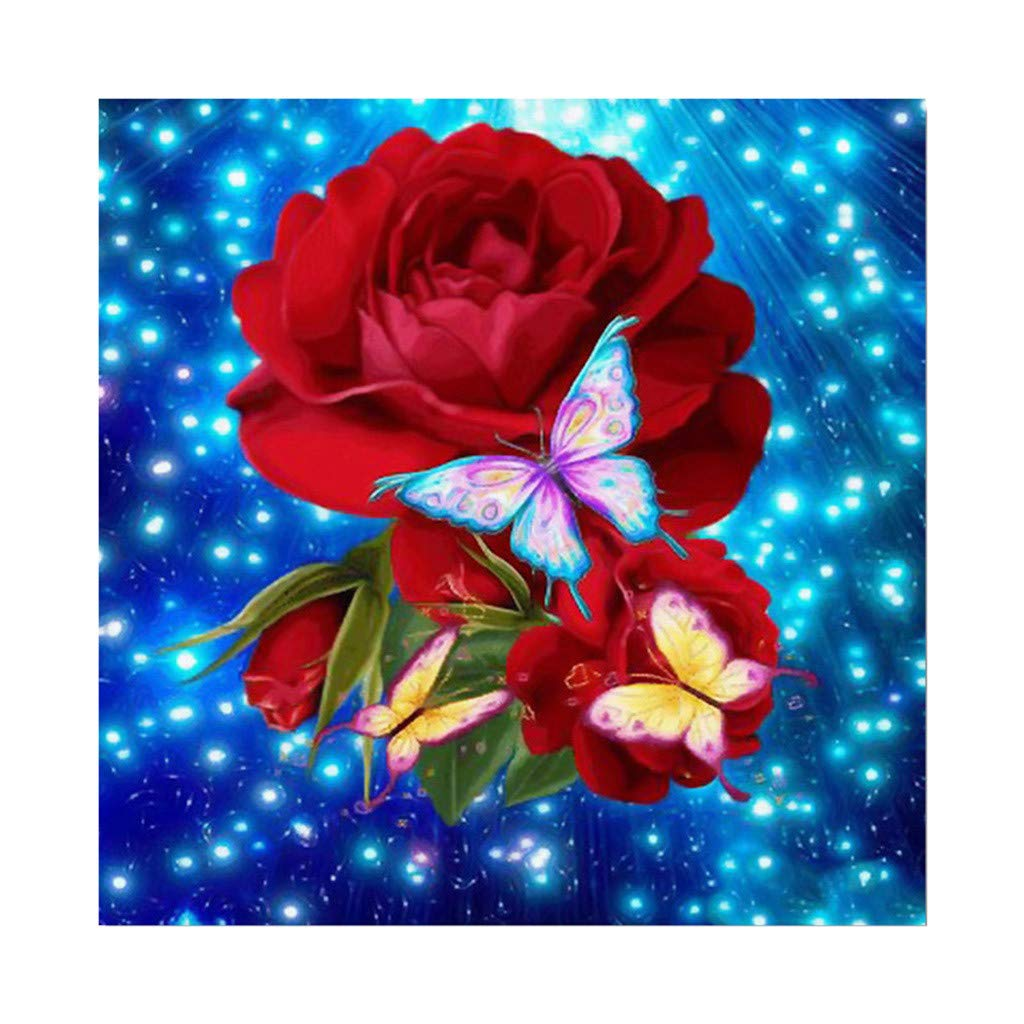 5D Embroidery,Hoshell 5D Full Square Dirll Embroidery Paintings Rhinestone Pasted DIY Diamond Painting (B)