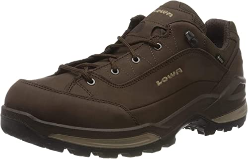 Renegade GTX Lo Low Rise Hiking Shoes