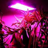 LED grow light,1000W (10010W) Plant Grow Light, Double Chips Super Bright Full Spectrum Hydroponic Plant Grow Lights for Indoor Garden Hydroponic Greenhouse Flower