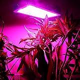 1000W LED Double Chips Super Bright Grow Light Lamp Full Spectrum Panel Veg Flower Medical Indoor Plant
