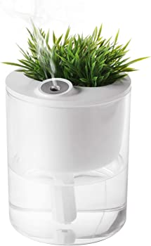 T4U Ultrasonic 320ml USB Cool Mist Humidifiers with Plant Container