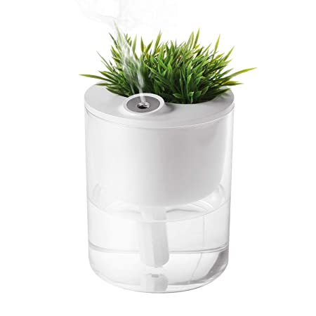 T4U Cool Mist Humidifiers, Ultrasonic Humidifiers for Desktop with Plant Container, 320ML USB Air Diffuser for Bedroom Office Small Plants with Nightlight Mute Auto Shut-Off Lasts Up to 10 Hours