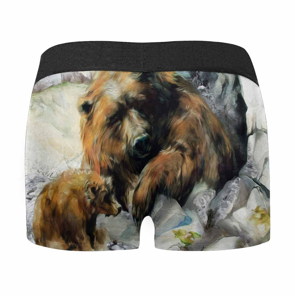 XS-3XL INTERESTPRINT Custom Mens Boxer Briefs Beautiful Brown Bear