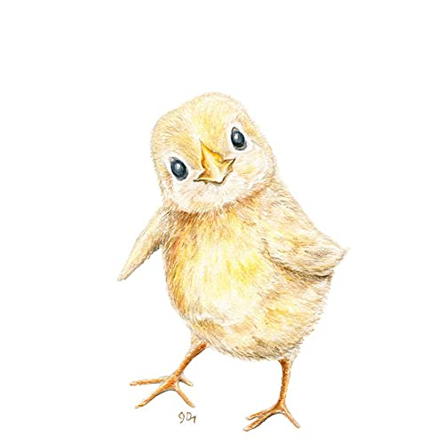Amazon.com: Chick Nursery Art Print, Baby Chick Wall Art, Children\'s ...