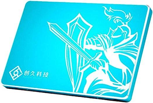 Reeinno - Disco Duro para Ordenador portátil (256 G, SSD, SATAIII ...