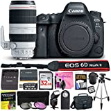 Canon EOS 6D Mark II 26.2 MP Digital SLR Camera (Wi-Fi Enabled) PROFESSIONAL PHOTOGRAPHER Lens Kit with EF 100-400mm f/4.5-5.6L IS II USM Lens & Premium Camera Works Accessory Bundle