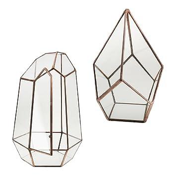 Magideal 2Stück Platte Sukkulenten Im Glas Portagioiello Terrarium  Geometrisch Kupfer Antik Geschenk Für Dekorieren Haus Modello