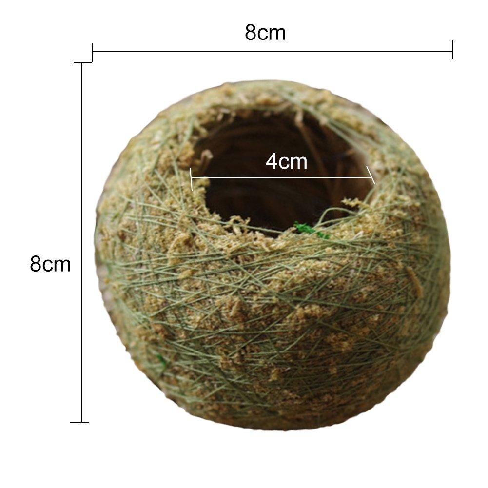 Bola de musgo natural seca Bonsai personalizada para plantar sustrato de esfagno verde