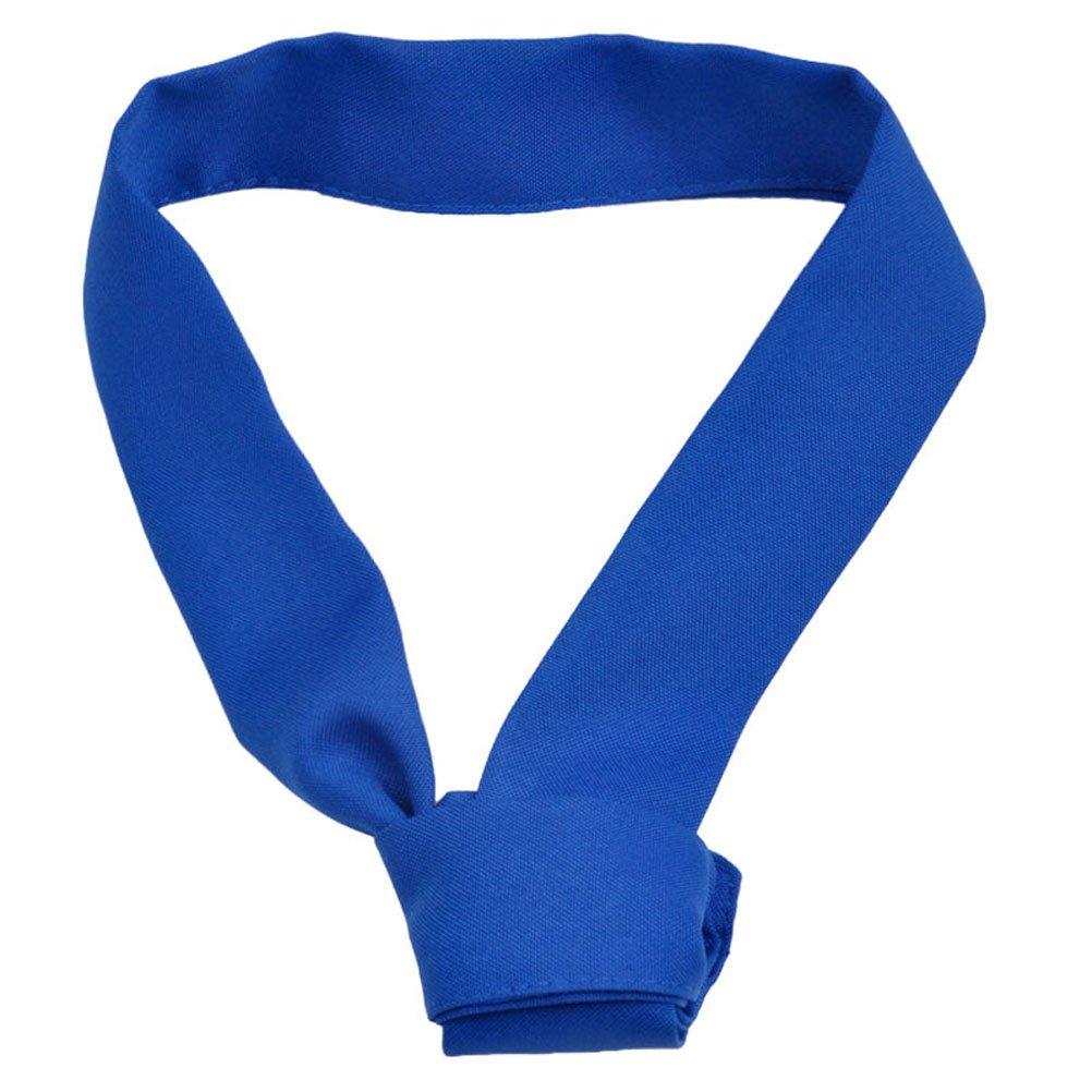 Nanxson(TM) Restaurant Unisex Bow Tie Necktie Scarf CF9024 (blue)