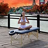 oakwood massage table - Master Massage 28'' Inch Skyline Light Weight Portable Massage Table Package