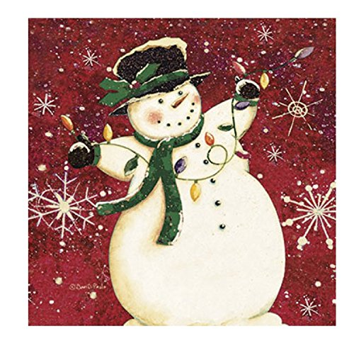 Lights Boxed Holiday Cards (Legacy Publishing Group Boxed Holiday Greeting Cards, Snowman Stringing Lights (HBX22654))
