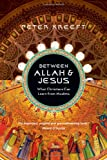 img - for Between Allah & Jesus: What Christians Can Learn from Muslims book / textbook / text book
